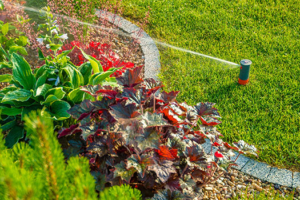 Garden Smart: Irrigating Your Vegetable Beds